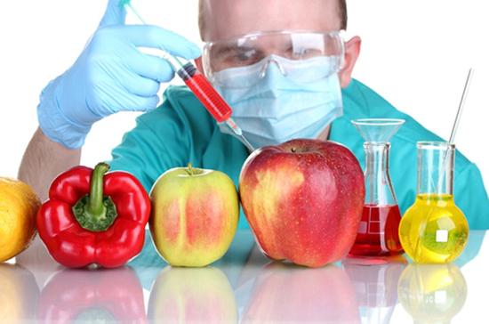 ГМО вРоссии оставят только для опытов