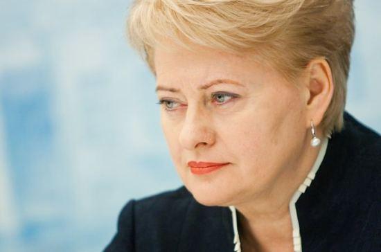 Президент Литвы предложила «позитивную дискриминацию» местных поляков, МВД против