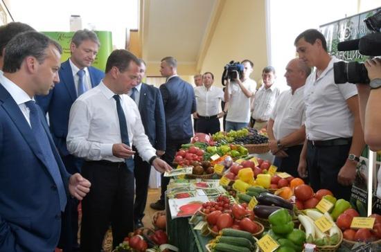 265 млрд рублей будет инвестировано впроекты поимпортозамещению — Медведев