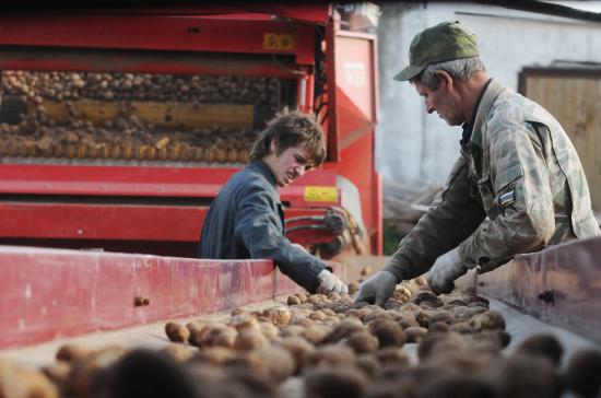 Минфин решил сэкономить на передовиках сельхозпроизводства