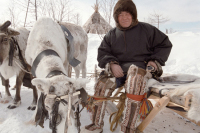 Квота для северян – понятие не резиновое