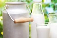 Какое молоко пьют россияне?