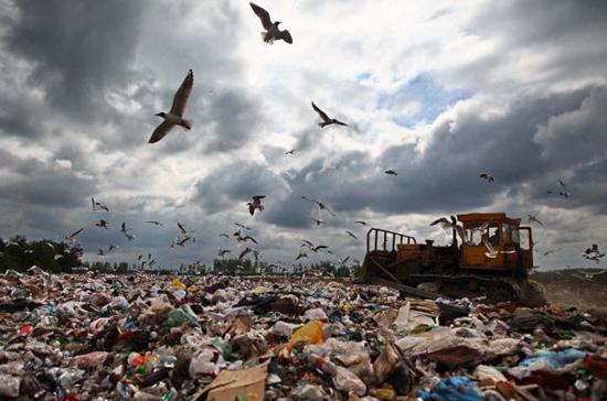 В Минприроды рассказали о борьбе с «серыми» свалками «мусорной мафии»