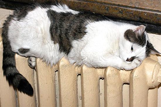 Новая модель теплоснабжения «нагреет» потребителя