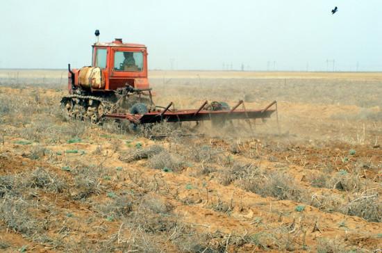 Калашников считает, что в агрокомплексе нужно ввести госзаказ на 5 лет