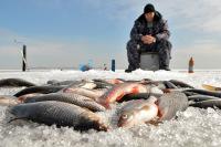 Рыбалка остаётся бесплатной