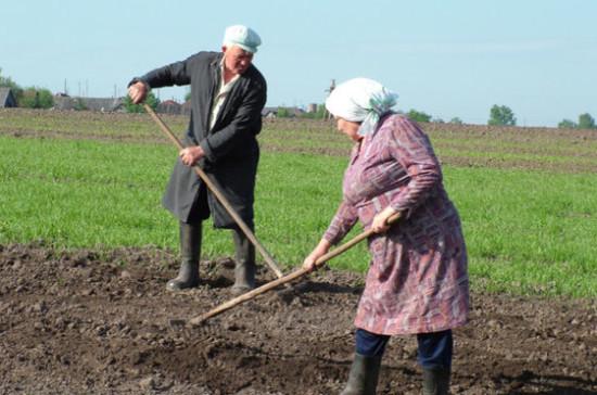 В Совете Федерации  предложил дать регионам право самим распределять субсидии для крестьян