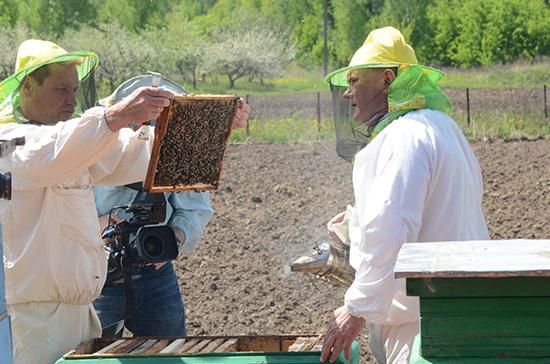 В Госдуме можно будет попробовать мёд с пасеки Геннадия Зюганова