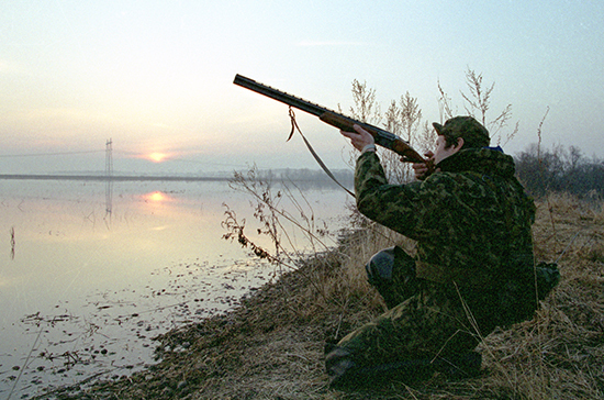 Право охотников на общедоступные охотугодия защитят законом