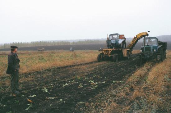 Сельхозпроизводителям снизят налоги