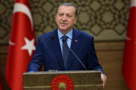 Эрдоган: основная часть  жителей  Турции высказалась запоправки вконституцию
