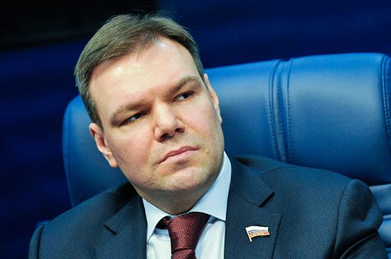 Левин: в России дистанционные медицинские технологии безальтернативны