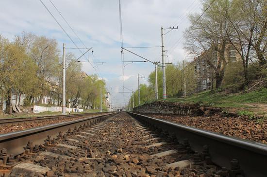 Региональные депутаты предложили разрешить продажу через Интернет билетов на поезда в Калининград