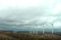 Минэнерго может продлить поддержку возобновляемой энергетики после 2024 года