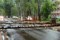 В МЧС объяснили отсутствие экстренного оповещения об урагане