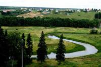 Закон о «лесной амнистии» дошел до Совета Федерации