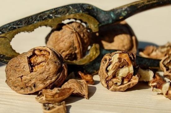 Грецкие орехи помогают размножаться полезным бактериям