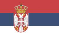 Президент Сербии заявил о давлении со стороны «великих держав» из-за отношений с РФ
