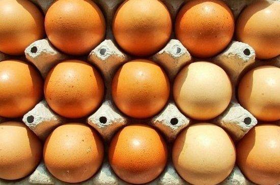 Россельхознадзор: Зараженные яйца изЕС могут попасть вРФ изстран ЕврАзЭС