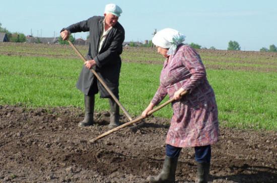 СМИ: российским фермерам возместят затраты на продвижение продукции