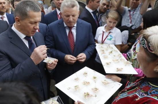 «Улица Дальнего Востока» открылась на ВЭФ-2017 во Владивостоке