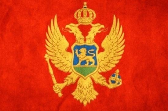Черногорская оппозиция обвинила власти в инсценировке попытки государственного переворота