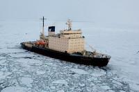Госпрограммы по развитию Арктики и Курил актуализируют