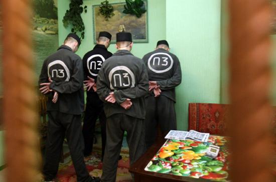 ЛДПР внесла в Государственную думу проект решения обамнистии