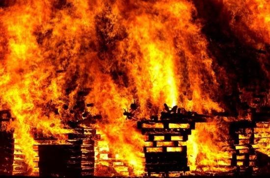 СМИ: жертвами пожара в лагере под Одессой стали двое детей