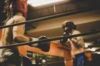 Депутаты Госдумы провели в Крыму мастер-классы по боксу и борьбе