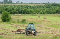В Совфеде поддержали предложения тульских аграриев по развитию регионального АПК