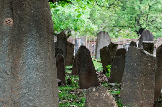 Калашников призвал скорее урегулировать вопрос посещения могил предков жителями Грузии и Абхазии