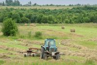 Турция объяснила ужесточение правил импорта сельхозпродукции РФ