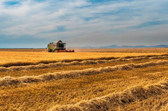 Плотников: экспорт сельхозпродукции в 2017 году составил $20 миллиардов