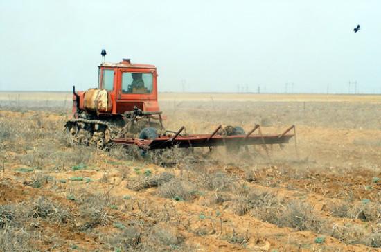 Кашин: восстановление заброшенных сельхозземель пополнит бюджет на триллионы рублей