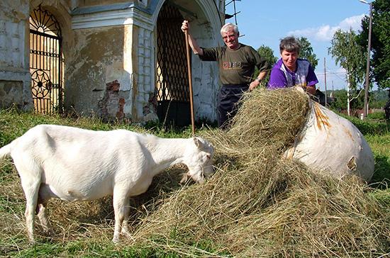Минсельхозу предложили изменить правила господдержки аграриев