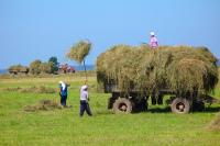 В 2018 году в России может появиться единый орган по управлению земельными ресурсами