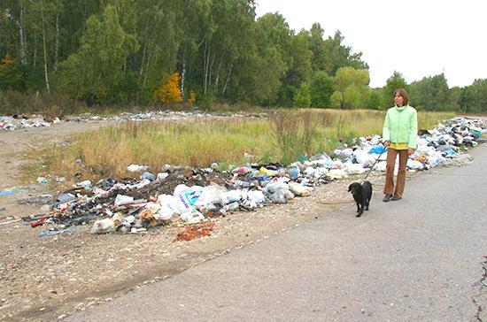 В Подмосковье предлагают в 100 раз поднять штрафы за сброс мусора