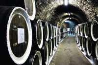 Реабилитация отечественного виноделия