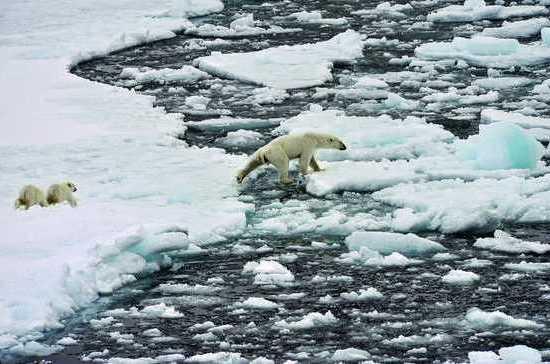 Уровень Мирового океана вырастет почти на метр
