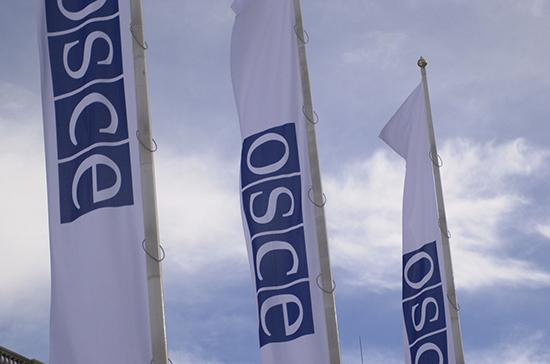 ОБСЕ планирует направить на выборы президента России 500 наблюдателей