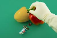 Россельхознадзор начнёт мониторинг воздействия ГМО на человека