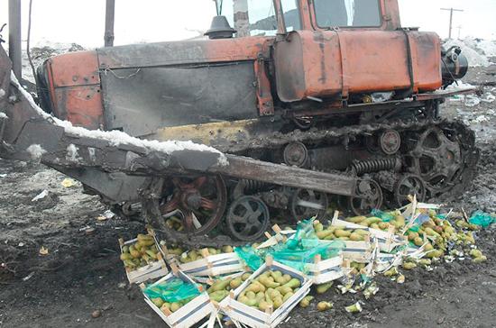 Россельхознадзор за месяц уничтожил 374,5 тонны санкционной продукции