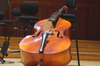 Заграничные гастроли перестанут разорять российских скрипачей