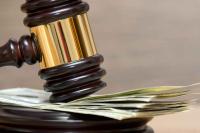 Региональный эконадзор могут наделить правом штрафовать граждан