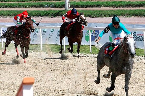 В Ростовской области решили сделать конный спорт визитной карточкой региона
