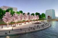 Центральный парк в «Сколково» благоустроят в 2018 году