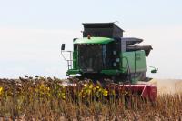 Регионы получат право определять величину сельхозналога