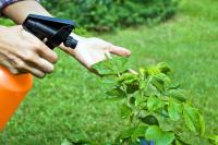 В российских портах предложили запретить хранение пестицидов и агрохимикатов