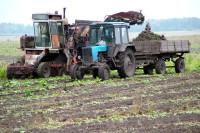 Правительство направит на развитие сельского хозяйства порядка 240 млрд рублей в 2018 году